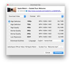 4K Video Downloader 4.11.3 Crack  With Registration Key 2020